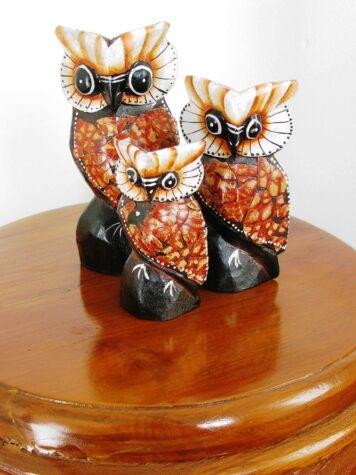 Osmond the owl set