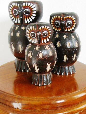 Oscar the owl set
