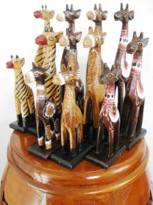 Miniature Giraffes